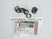 Кольцо уплотнительное болта клапанной крышки Лачетти 1,8/ Эванда 2,0(цена за к-т 10шт)KS 90411826